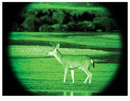为什么夜视仪看到的东西都是绿色,军用夜视仪观测距离多远?